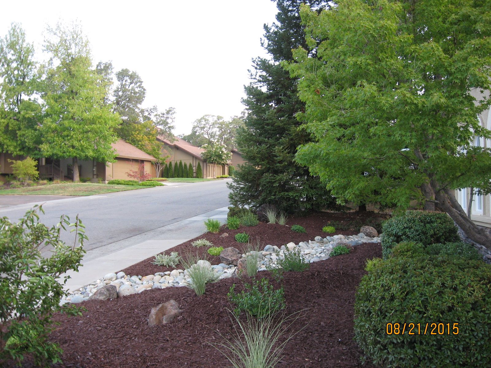 The Yard Guy Placer County